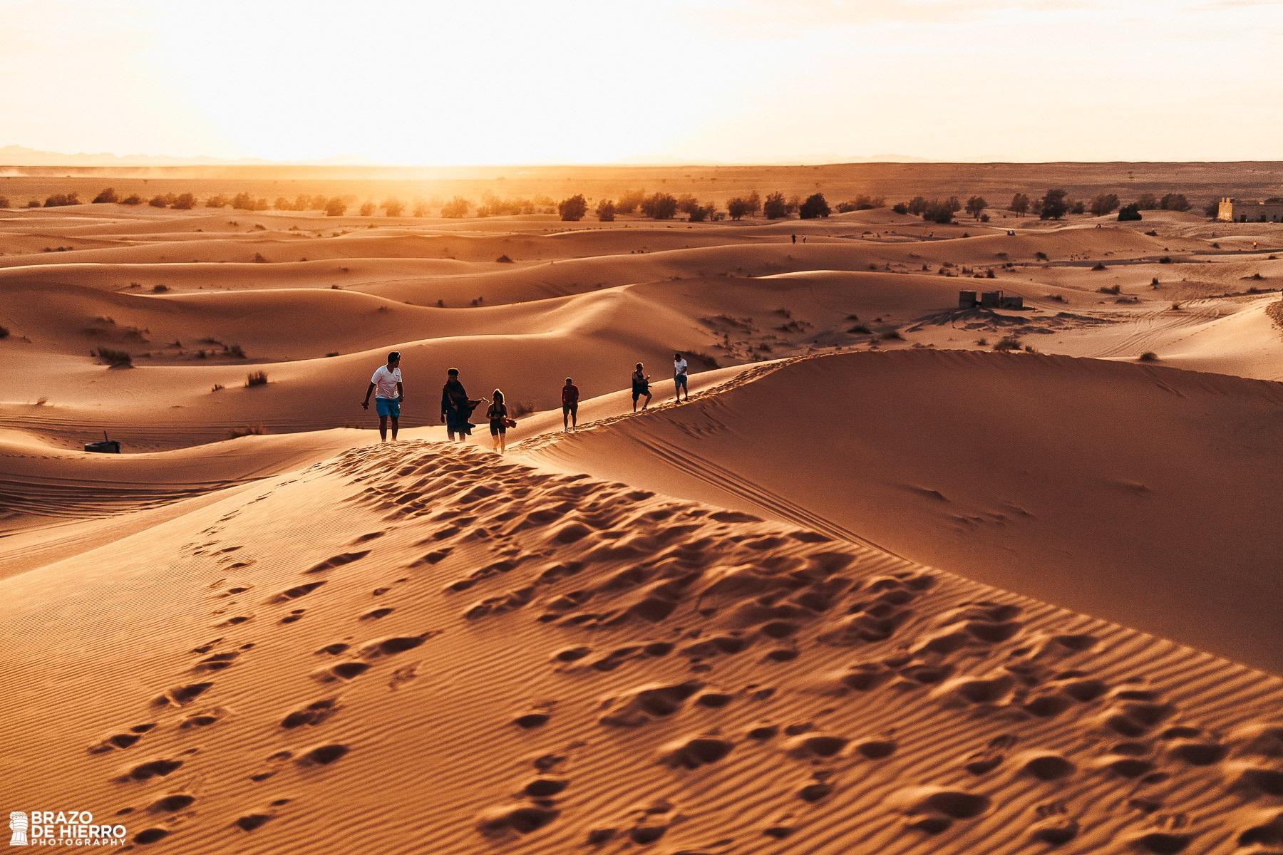 Vive el desierto